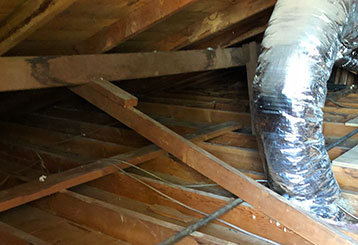 Crawl Space Cleaning | Attic Cleaning Hayward, CA